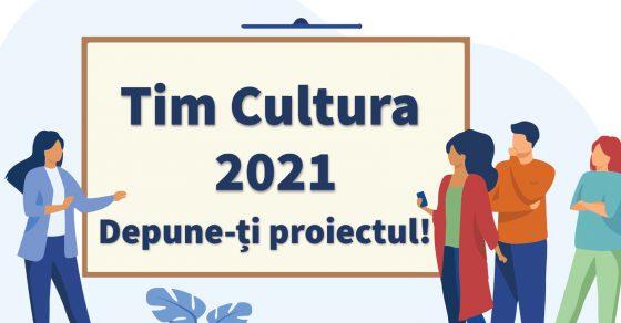 Start la depunerea proiectelor culturarele finanțate de CJ Timiș